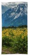 Wildflowers And Mount Moran Beach Towel