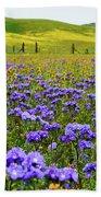 Wildflowers Carrizo Plain Beach Towel