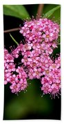 Wildflowers Come In Many Sizes Beach Towel
