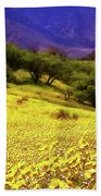 Wildflowers In The San Emigdio Mountains Beach Towel