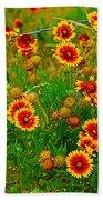Wildflowers On The Barb Beach Towel