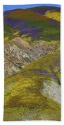 Wildflowers Up The Hills Of Temblor Range At Carrizo Plain National Monument Beach Towel