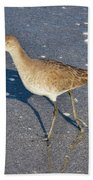 Willet And Shadow Beach Towel