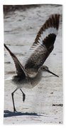 Willet Take-off Beach Towel