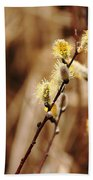 Willow Catkins Beach Towel