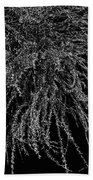 Willow Noir Beach Towel
