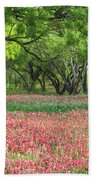 Willows,indian Paintbrush Make For A Colorful Palette. Beach Towel