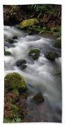 Wilson Creek #15 Beach Towel