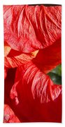 Wilting Hibiscus Two Beach Towel