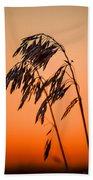 Wilting Sunset Beach Towel