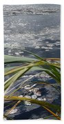 Wind And Water Beach Towel