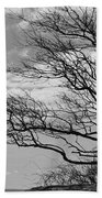 Wind Blown Beach Towel