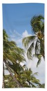 Wind Though The Trees Beach Towel