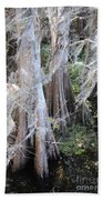 Wind Through The Cypress Trees Beach Towel