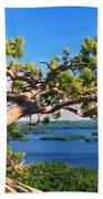 Windswept Pine On Rattlesnake Mountain Beach Towel
