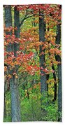 Windy Day Autumn Colors Beach Towel