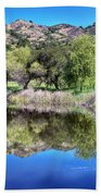 Winery Pond Reflections Beach Towel