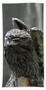Wings Above A Tawny Frogmouth That Looks Interesting Beach Towel