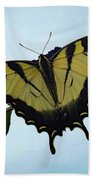 Wings Are Perfect Match - Eastern Tiger Swallowtail Beach Sheet