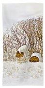Winter Beauty Beach Sheet