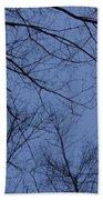 Winter Blue Sky Beach Towel