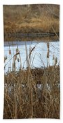 Winter Cattails  Beach Towel