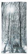 Winter Cold Beach Sheet