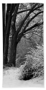 Winter Day - Black And White Beach Towel