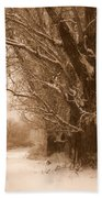 Winter Dream Beach Towel by Carol Groenen