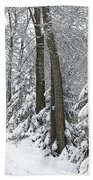 Winter Drive Beach Towel