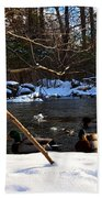 Winter Ducks Beach Towel