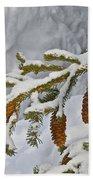 Winter Dusting Beach Towel