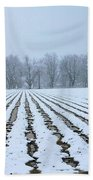Winter Field Beach Towel