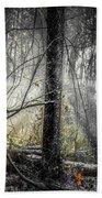 Misty Winter Forest Beach Towel
