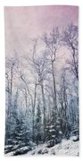 Winter Forest Beach Towel by Priska Wettstein