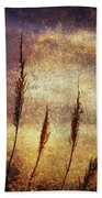 Winter Gold Beach Towel