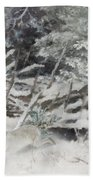 Winter Hare At The Fence Beach Towel