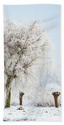 Winter In Holland Beach Towel