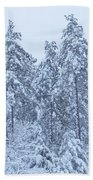 Winter In Maine 2017 Beach Towel