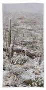 Winter In The Desert Beach Towel