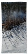 Winter Lake View Beach Towel