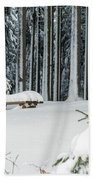 Winter Moments In Harz Mountains Beach Towel