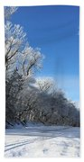 Winter On 210th St. Beach Towel