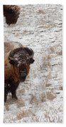 Winter Pasture Beach Towel