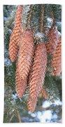Winter Pine Cones Beach Towel
