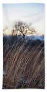 Winter Prairie Grass At Dusk Beach Towel