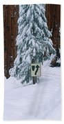 Winter Road Into Sequoia National Park Beach Towel