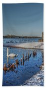 Winter Swan Lake Beach Towel