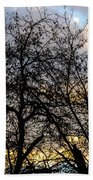 Winter Trees At Sunset Beach Towel