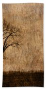 Winter Trees In The Bottomland 1 Beach Towel